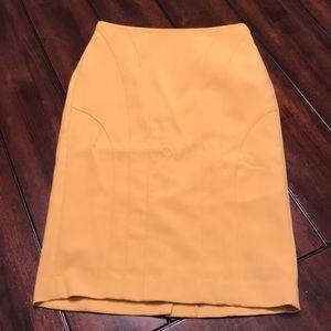 NWOT Banana Republic Pencil Skirt